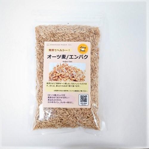 【新商品入荷】スプラウト用オーツ麦(オーツ グロート)